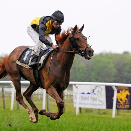 Horse Racing wagering tips